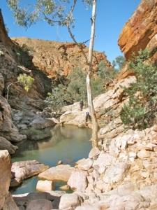 Goat Camp Creek Gorge